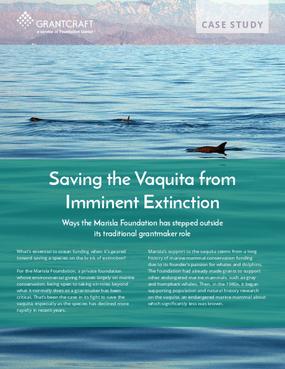 Saving the Vaquita from Imminent Extinction