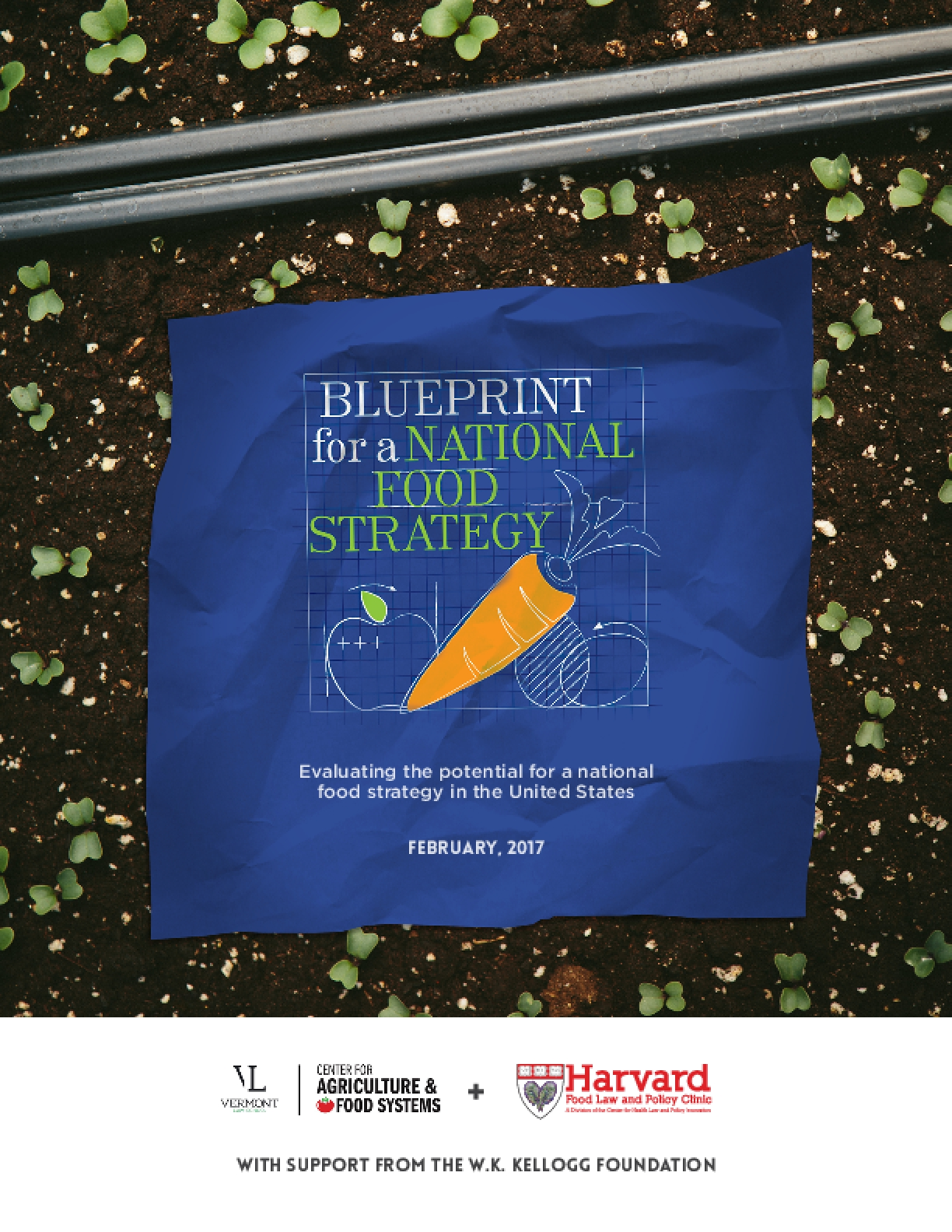 Blueprint for a National Food Strategy: Evaluating the Potential for a National Food Strategy in the United States