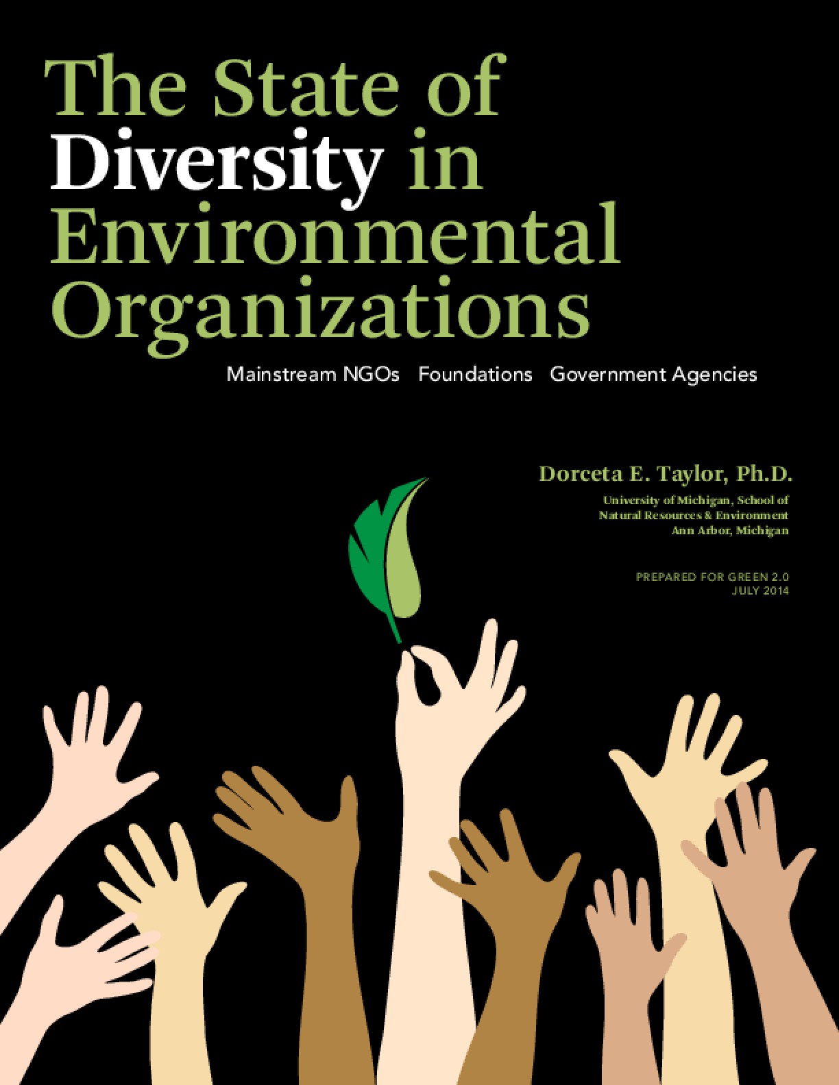 The State of Diversity in Environmental Organizations