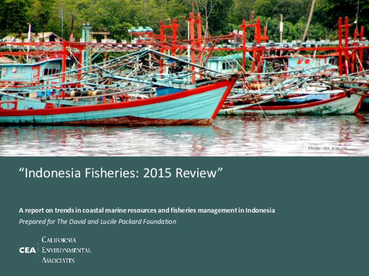Indonesia Fisheries: 2015 Review