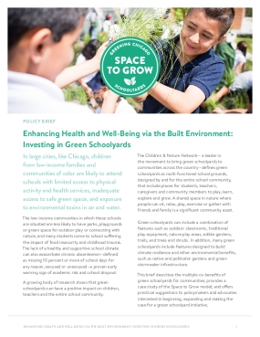 Enhancing Health and Well-Being via the Built Environment: Investing in Green Schoolyards